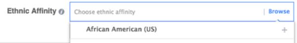 Facebook ads ethnicity category