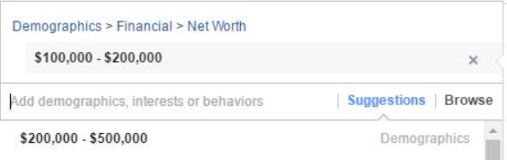 Facebook ads net worth section