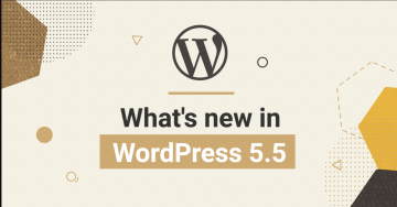 5 Things that you should know about WordPress 5.5.